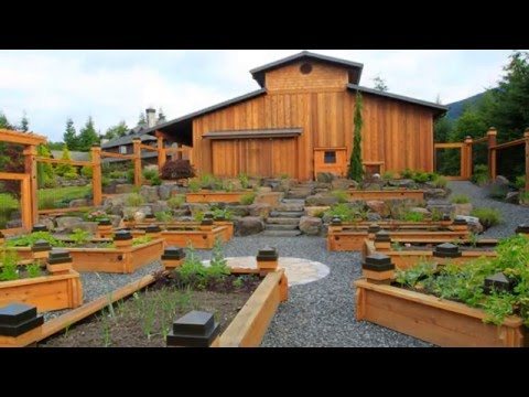 backyard raised bed gardening ideas