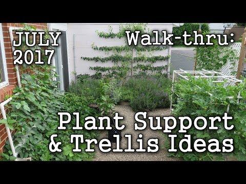 Trellis Plant Support Ideas + 2017 July Urban Garden, Edible Landscape -Albopepper Walk thru