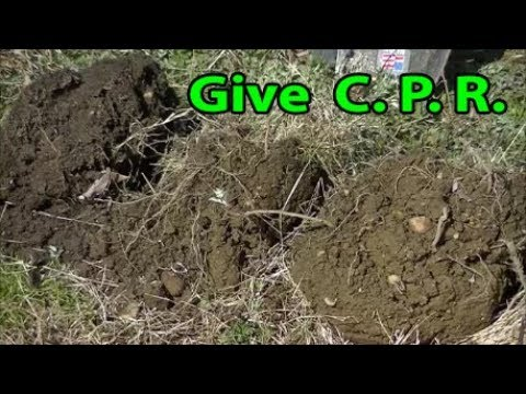 DIY with C. P.  R.  to your GARDEN Soil to REVIVE It.
