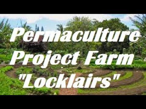 #Organic #Gardening at Locklairs #Permaculture Project #Farm.  Seabuckthorn, Bees and MORE !
