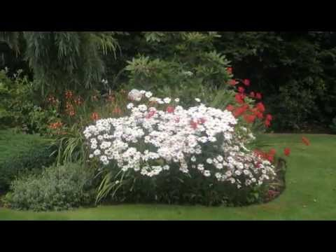 Landscaping Ideas in Tacoma, Washington 253-761-2200