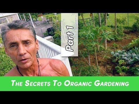 The Secrets To Organic Gardening Part 1 | Dr. Robert Cassar