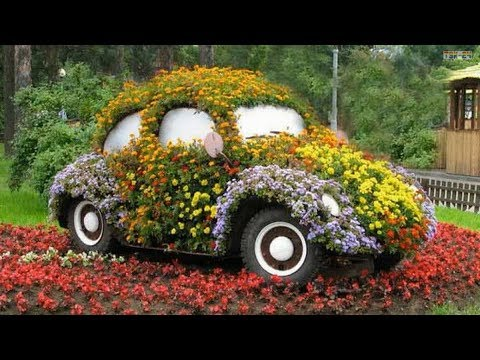 Fun and Creative Container Gardening Ideas