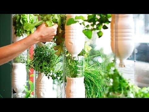 20 Indoor Herb Garden Ideas