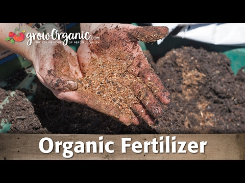 Organic Fertilizer – Tips For Choosing the Right Kind For Your Garden