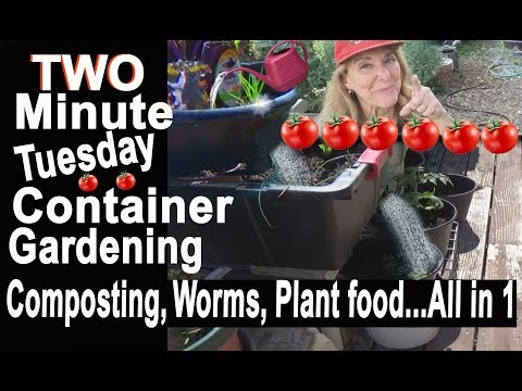Best Container Garden System Easy Gardening Ideas Compost-Plant food-Mulch-Worms