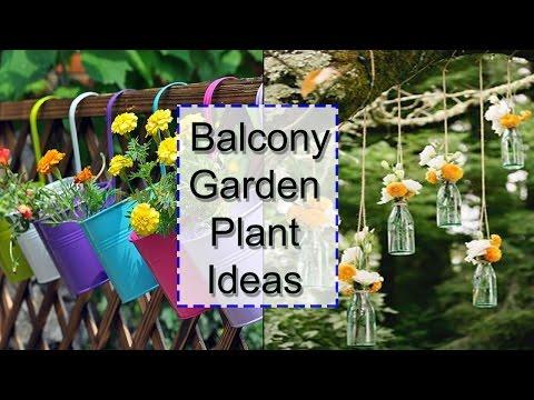 Balcony Garden Plant Ideas | DIY