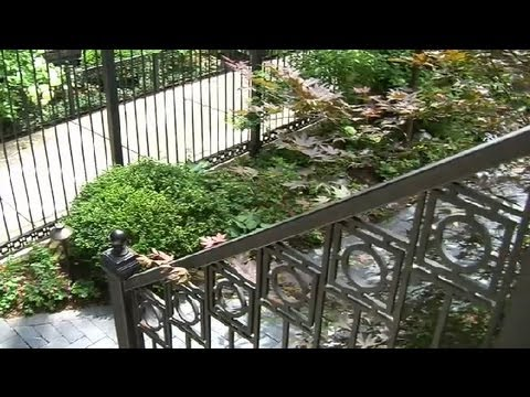 Landscape Design Ideas for a Front Yard : Landscaping Ideas