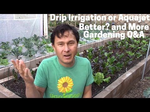 Is Drip Irrigation or Aquajet Better? & More Organic Gardening Q&A