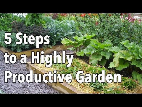 Vegetable Gardening: How to Plan a Highly Productive Garden