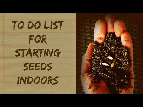 What Do I Need To Start Seeds Indoors – Organic Gardening For Beginners