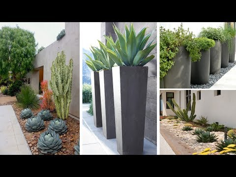 75+ Front and Backyard Landscaping Ideas for Your Home | GARDEN IDEAS