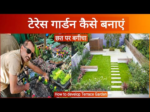 terrace Gardening // Making of terrace garden // Gardening Ideas in India // Kanchan Nursery