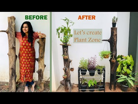 Garden decor ideas in Zero Budget || Gardening ideas Malayalam||DIY||