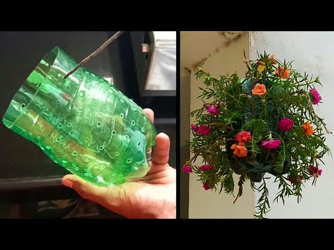 Amazing Plastic Bottle Vertical Garden Ideas | Plastic Bottles On Walls