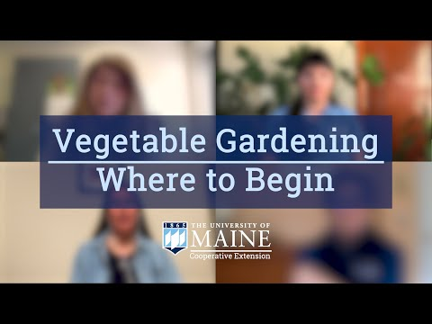 Victory Garden for ME: Vegetable Gardening: Where to Begin