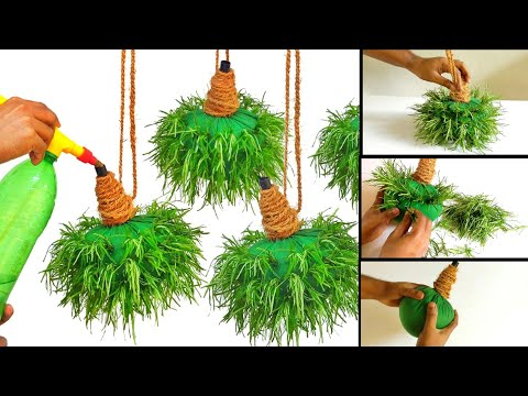 hanging plants ideas/hanging garden/gardening ideas for home