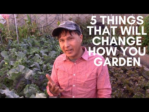 5 Things That Will Change How You Grow an Organic Garden Forever