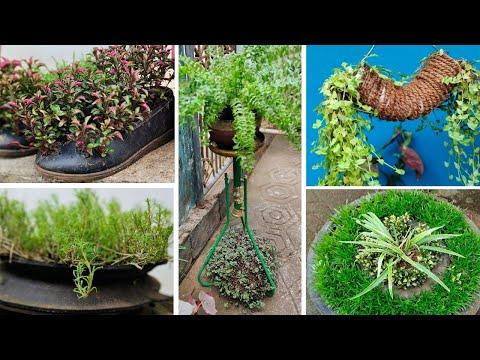 Garden ideas using Waste materials/zero cost ideas/How to make garden using Waste materials
