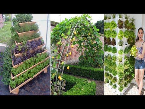 46 Amazing Ideas For Growing A Vegetable Garden In Your Backyard | garden ideas