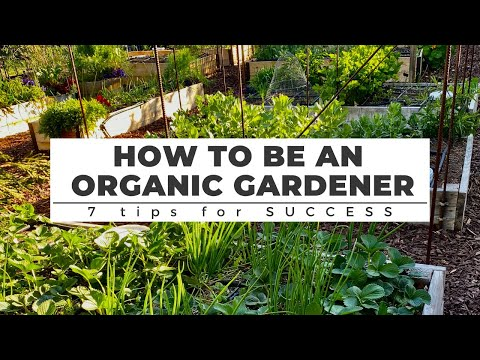 How to be an ORGANIC GARDENER: 7 Tips for Success